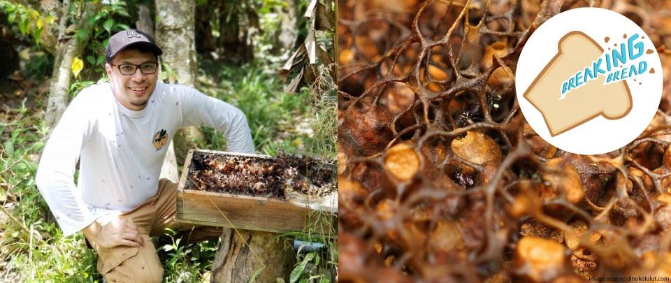 Ep6: Kelulut Honey