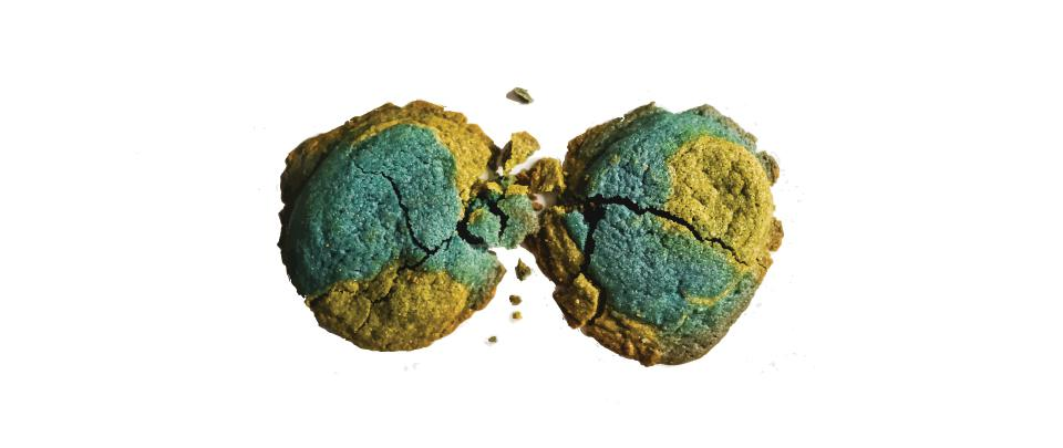 Ep101:In the Kitchen: Earth Cookies