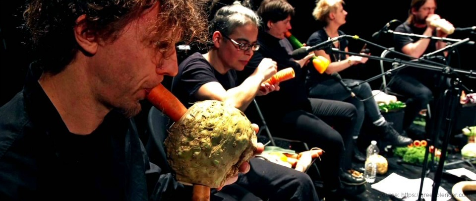 Vegetable Orchestra Musician