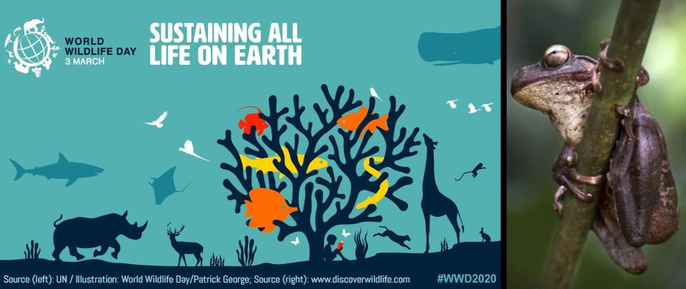 World Wildlife Day 2020: Sustaining All Life on Earth
