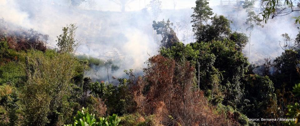 Environmental Conservation Under Perikatan Nasional