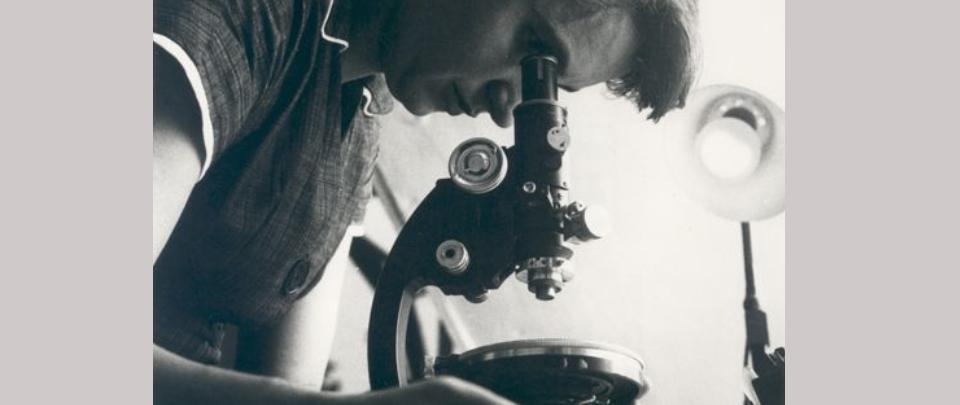 Rosalind Franklin at 100