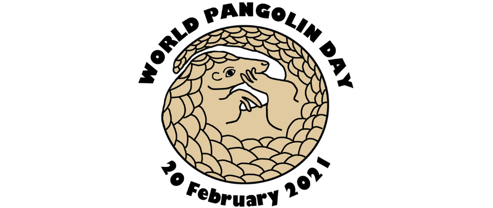 World Pangolin Day 2021: The Plight of the Pangolin
