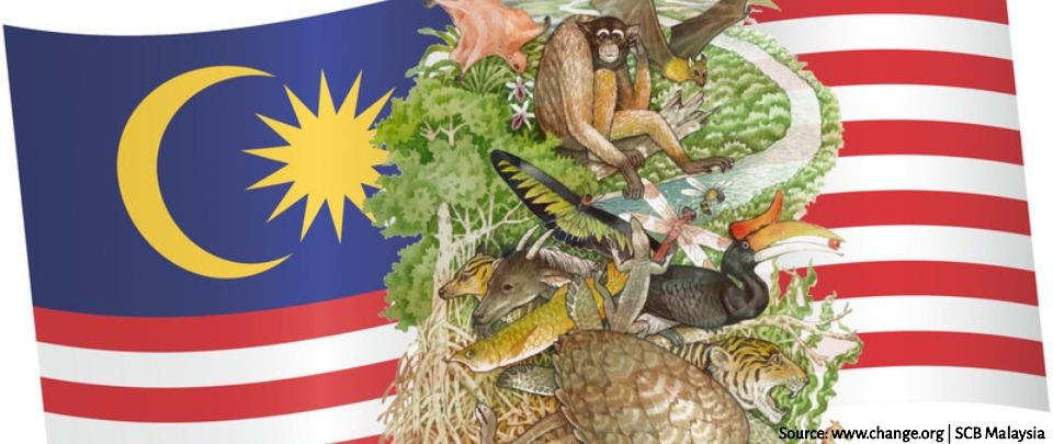 A Dedicated Ministry for the Environment in the Government of Malaysia