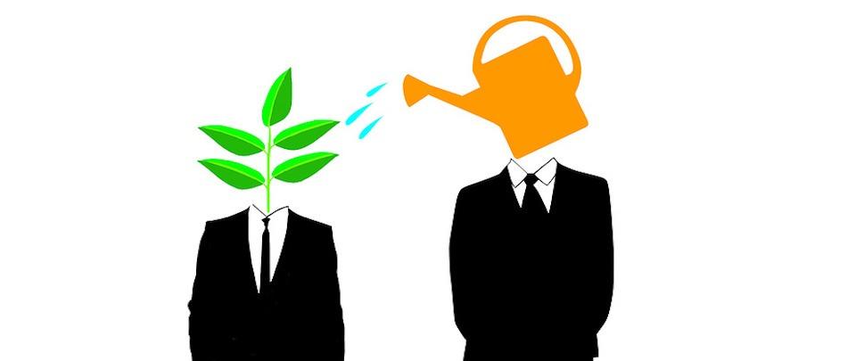 Why Mentors Matter