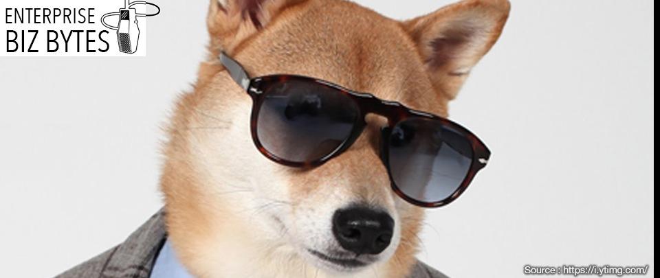 "Can ""Puppy Profiles"" Combat Hiring Bias?"