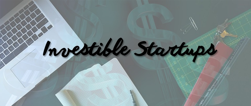 What's An Investible Startup?