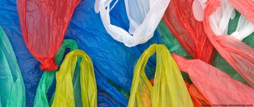 When Plastic Bags and Politics Mix