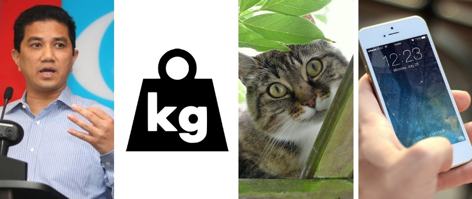 Curious Cats and A Brand New Kilogram