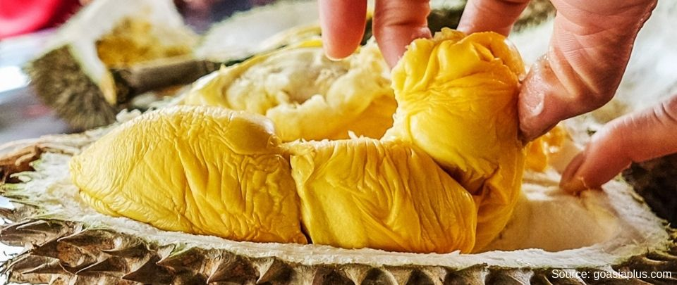 Malaysia Represent: The Durian