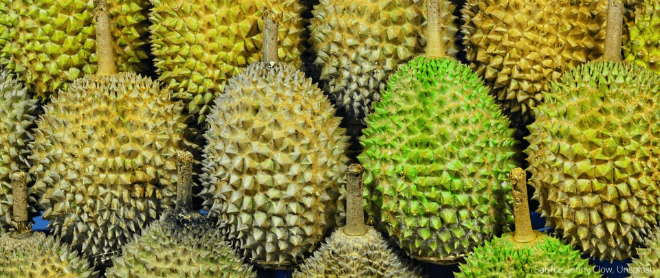 Thorny Scams This Durian Season