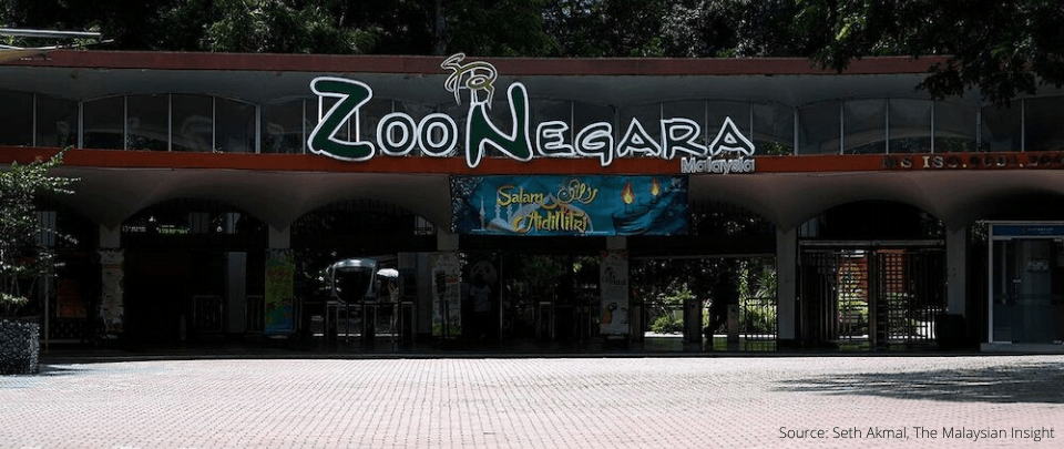 The Cost Of Running A Zoo