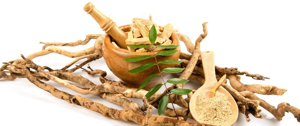 Traditional and Complementary Medicine: Does It Belong In The Bedroom?