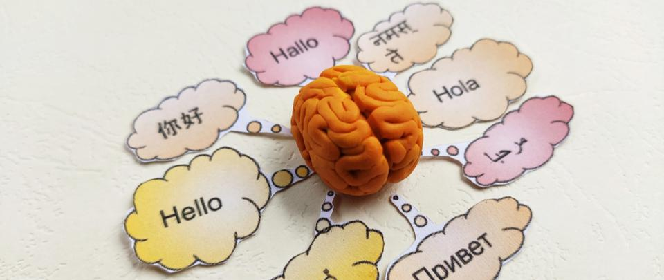 Brain Waves #39: This is How Your Brain Processes Language
