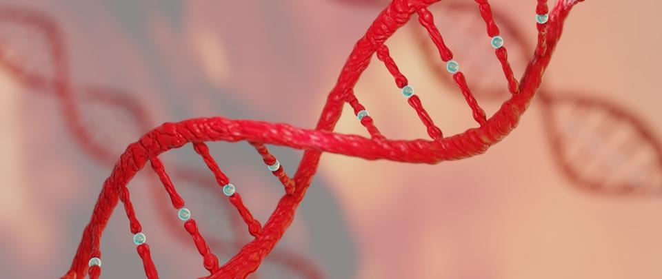 Targeting Genetic Vulnerabilities in Oral Cancer