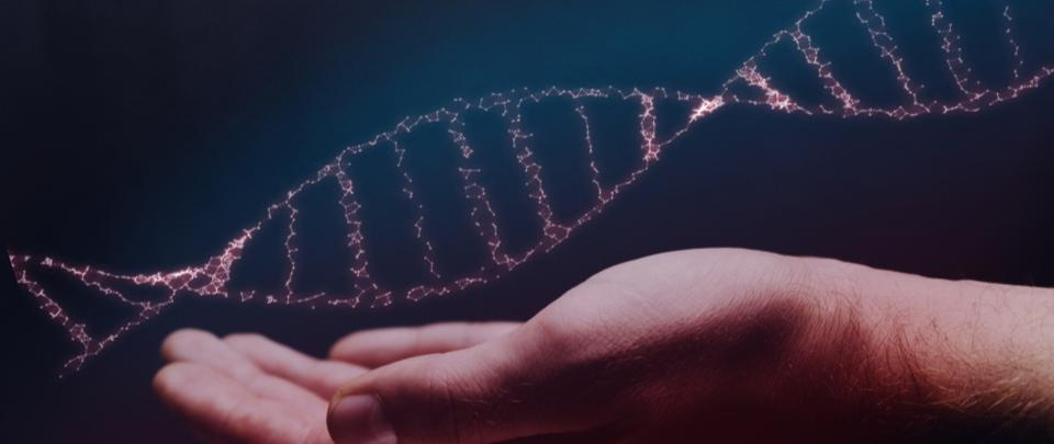 Brain Waves: The Human Genome Project - 20 Years Later
