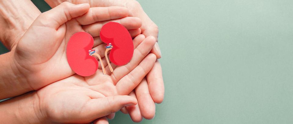 Gift of Life #3: My Kidney Transplant Story