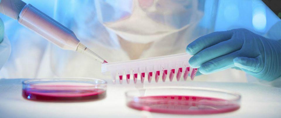 Engineering Viruses to Kill Cancer