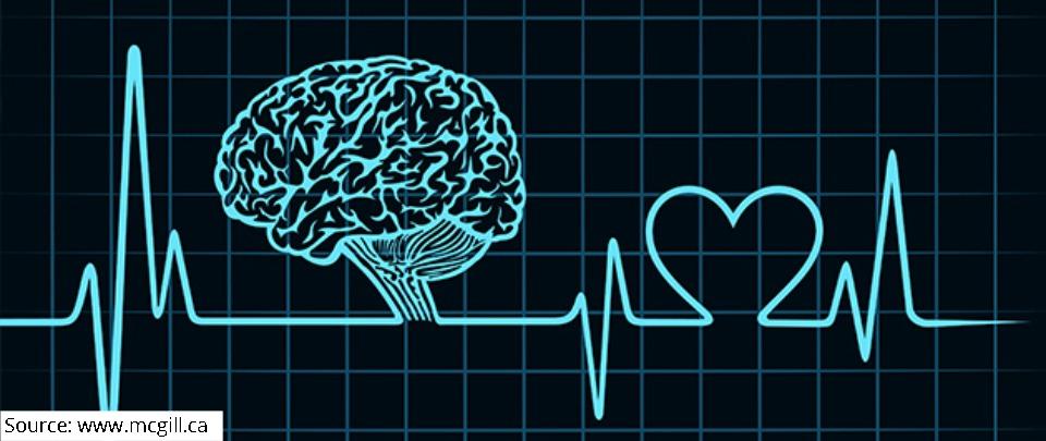 Neuro Rehab #1: Stroke and Neurological Disorders