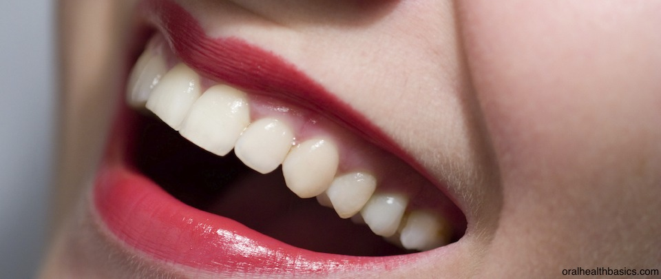 The Modern Tooth Fairy - Dental Stem Cells