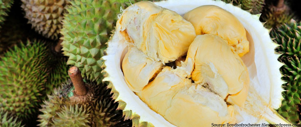 Durians Are Forever