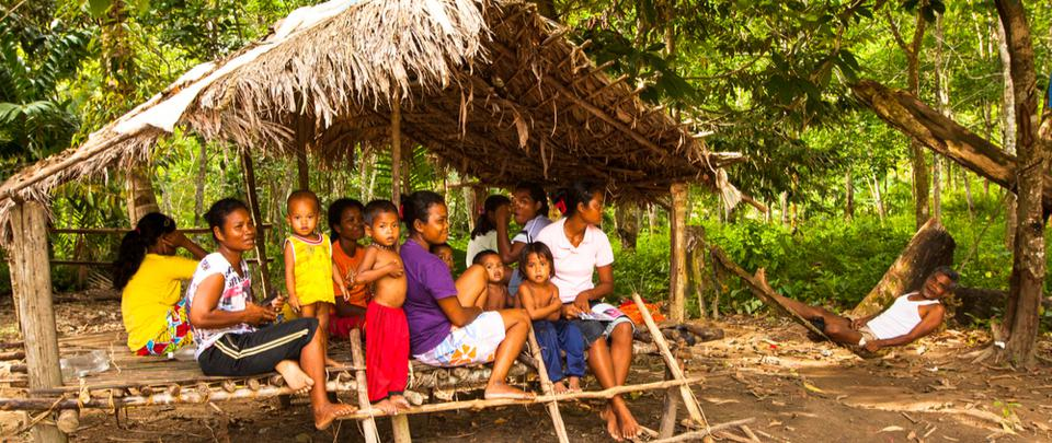 Stay Home & Watch: Films about Orang Asli Rights by Shafie Dris