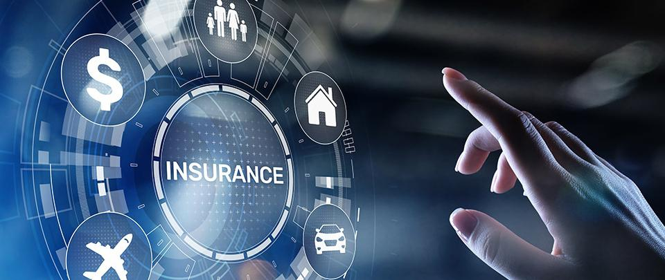 Allianz Life Insurance: C.E.O Programme Part 2