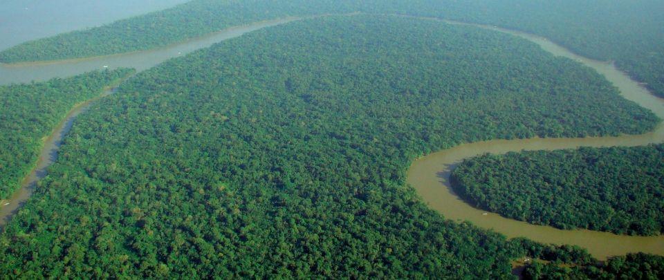 Political Bickering Belies Crisis In Amazon Fires