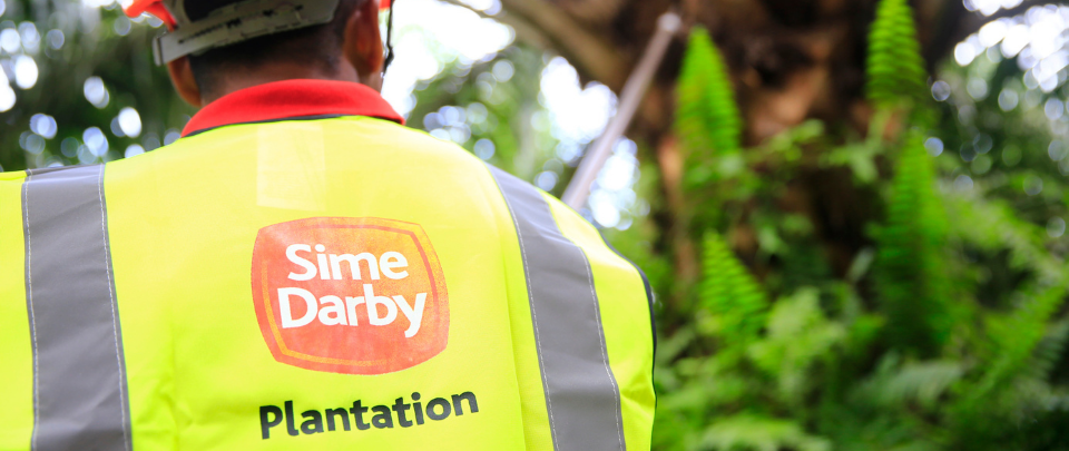"Sime Darby Plantation Claims Accusations Are ""Absolutely False"""