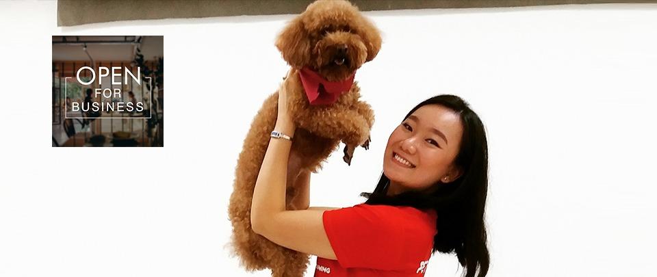 Putting Pet-care Online