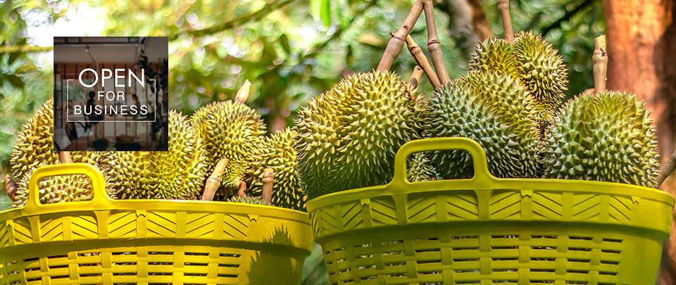 Have Durian Will Travel