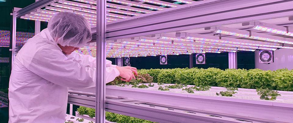 The High Tech Farmer