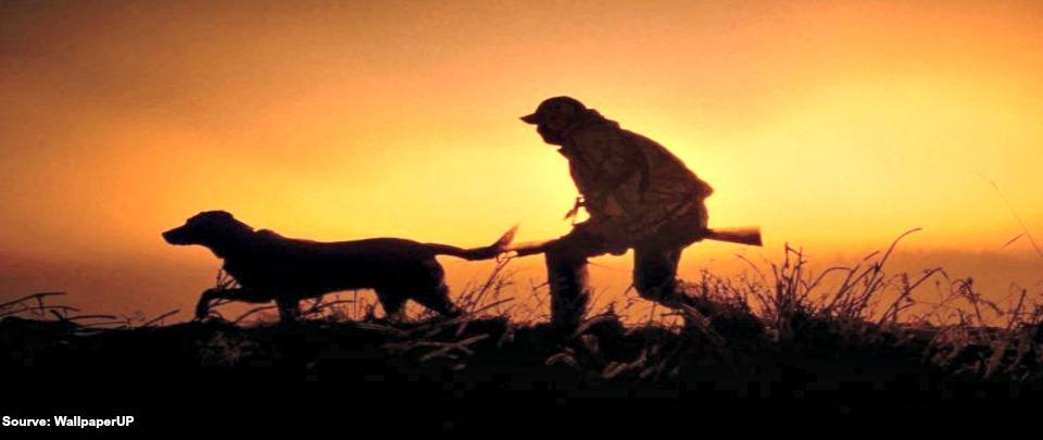 Should We Hunt Animals For Sport?