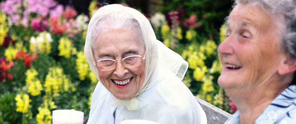The Secret of Longevity