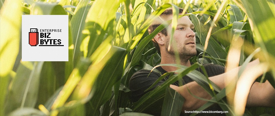 Farmers Are Earning More From YouTube Than Their Crops