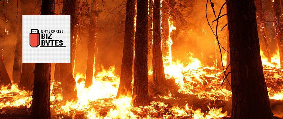 Can Tech Solve Forest Fires?