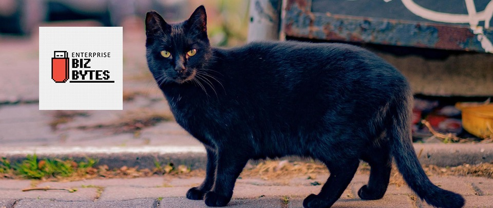 Do Superstitions Affect Your Workplace?
