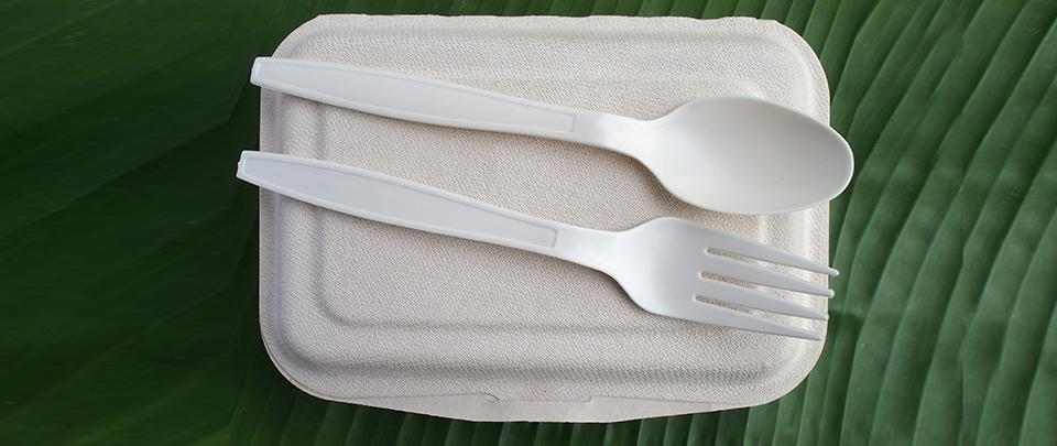 The Advent of Bioplastics