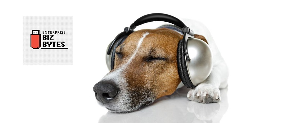 Who Let The Dogs Out? Spotify's Pet Playlists