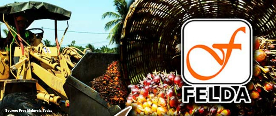 Is FELDA out of the Woods?
