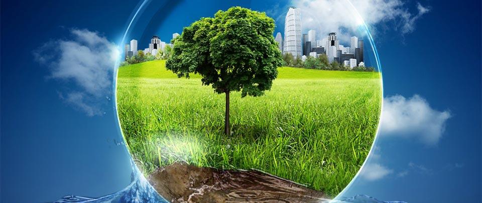 Talkback Tuesday: Earth Day 2014