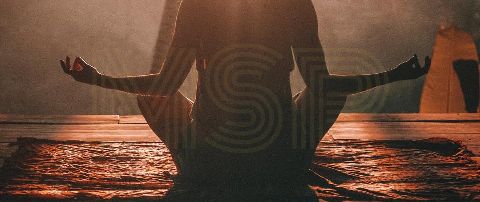 MSP169: Mindfulness & Motivation: The Science.