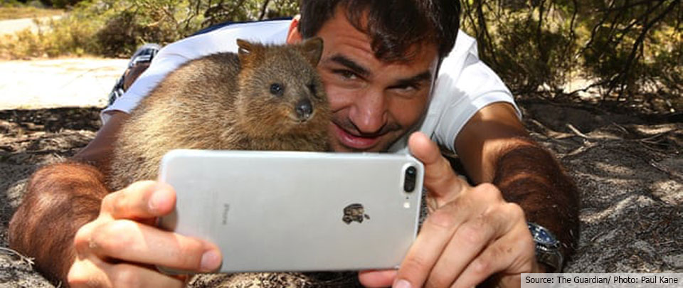 The Daily Digest: The Trouble With Wildlife Selfies