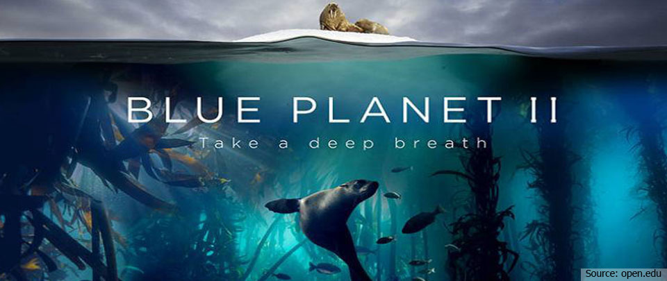 The Daily Digest: Blue Planet 2 on Malaysian TV